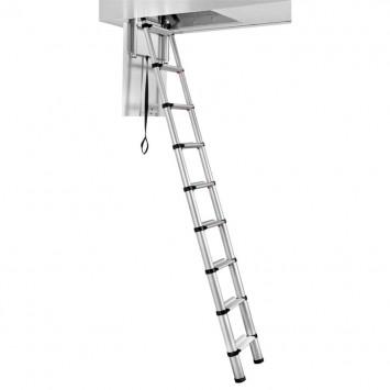 Echelle de meunier télescopique ajustable 2,35 - 2,45 m - Telesteps 60324-101